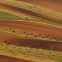 Moravské biopásy
