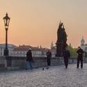 ranní cvrkot na mostě