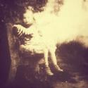 Spálený mlýn