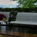 Pršelo