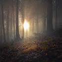 Podzimní ranní mlha nedaleko Čertových kamenů