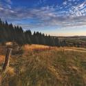 podzimní pastvina