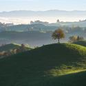 Mlhavé ráno v Kraji