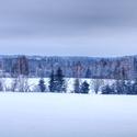 Všechny barvy zimy