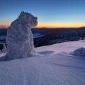 Sněžný pes - strážce hor