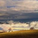 Jarní mlhy