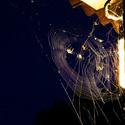 Pavoučí debata