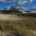 Lebská písečná duna