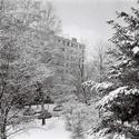 Zimní romance z pohledu okna.