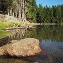 Čertovo jezero na Šumavě.