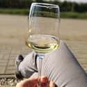 Moravské vínopití