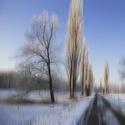 V zimním jiném světě