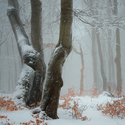 ...zima na Bouřňáku