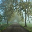 Mlha na konci tunelu