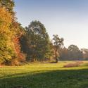 Nemošická stráň na podzim