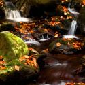 Podzimní potok....