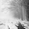 Zima, mlha, mráz, ale i přesto super ráno