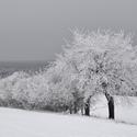 Zima jak má být !