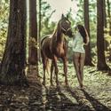 Láska ke koním ...