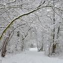 Sněžným tunelem.
