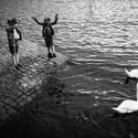 U řeky Vltavy