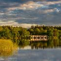Rybníky Staré Hlíny