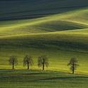 Moravská zima