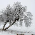 Březnová zima
