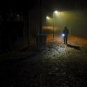 Večer v lese po setmění když už venku nikdo není...