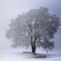 Zasněžená Vysočina