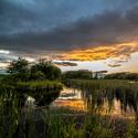 Přehýšovský rybník