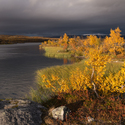 Barvy severního podzimu.