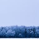 Zimní zima