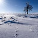 Krušnohorská zima