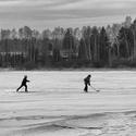 Na ledě