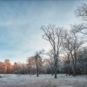 Namrzlé ráno