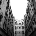 Linie Architektury.