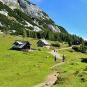Cestou po horských pasekách