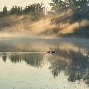 Po ránu na řece