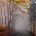 Listopadová, mlhavá jízda