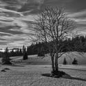 Šumava v zimní kráse