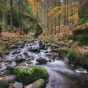Lesní řeka