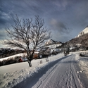 V zimnej krajinke