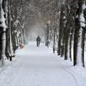 cyklista na sněhu