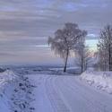 Zimní krajinou