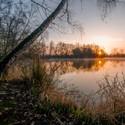 Jarní východ u rybníku