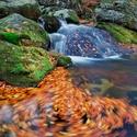 Podzim na Černém potoce