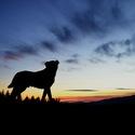 Sledovanie západu slnka