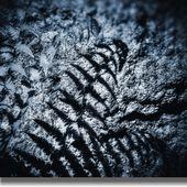 Hoya polarizační cirkulární filtr HMC 62 mm