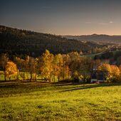 Březiny v podzimních barvách